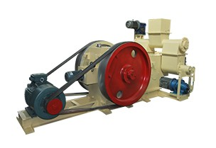 Mechanical Stamping Briquetting Plant