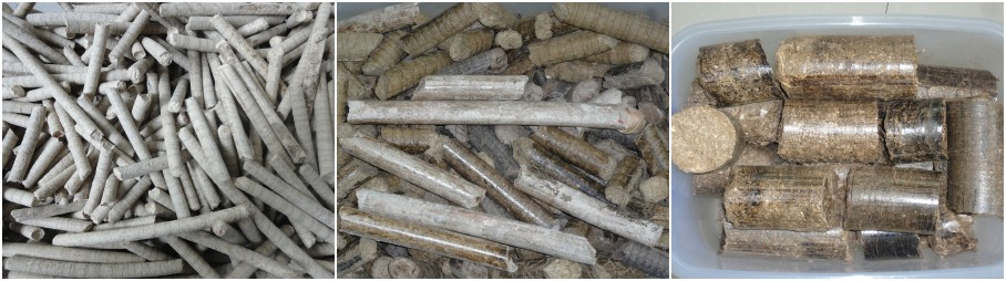 biomass pellets and briquettes
