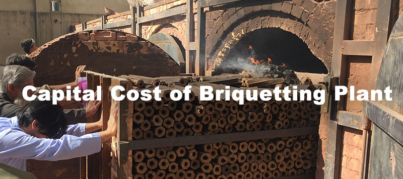 capital cost of setting up a biomass briquetting plant