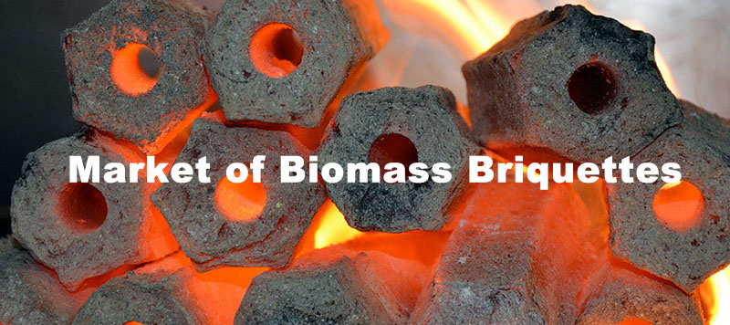 world market of biomass briquettes and briquetting plant