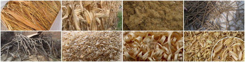 pelletizing biomass materials